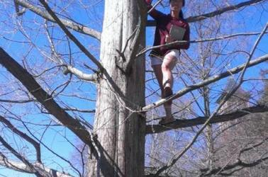 Student standing on branch of a tree